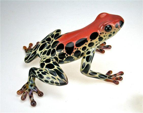 Glass poison dart frog by Beau Tsai: