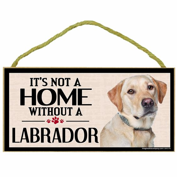Imagine This Wood Sign for Yellow Lab Dog Breeds ^^ If you love this, read review now : Dog Memorials