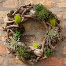 Maravillosa! con ramas, claveles del aire y musgo, una corona natural, ecológica, viva! Los más apegados a la tradición pueden agregarle unas estrellitas...