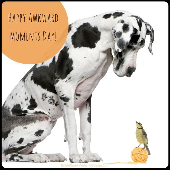 "Happy ""Awkward Moments Day""! (Don't believe me? Google it!)  #awkwardmomentsday #weirdholidays  #daysoftheyear"