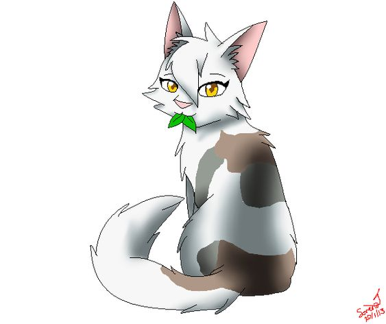 Warrior Cats Game: Pinterest • The World's Catalog Of Ideas