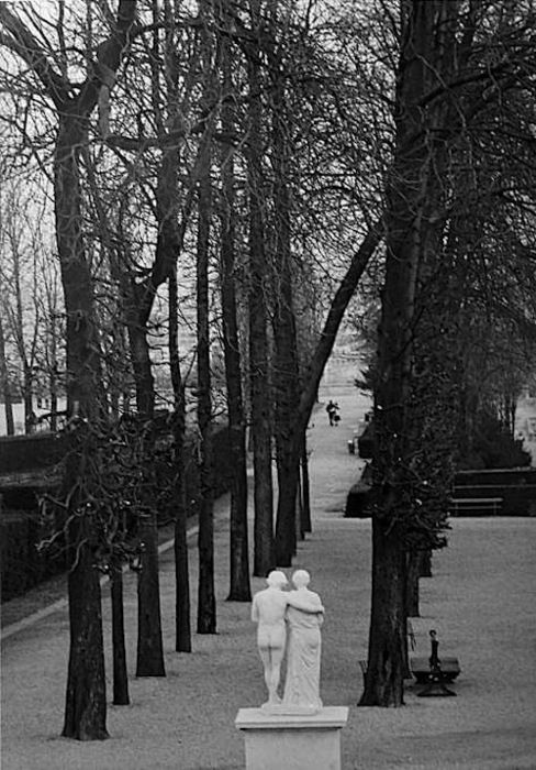 ✯ Parc de Saint Cloud, 1981 .. Photo by Edouard Boubat✯