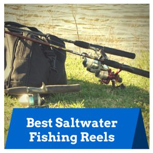best saltwater fishing reels | pinterest | saltwater fishing, Fishing Reels