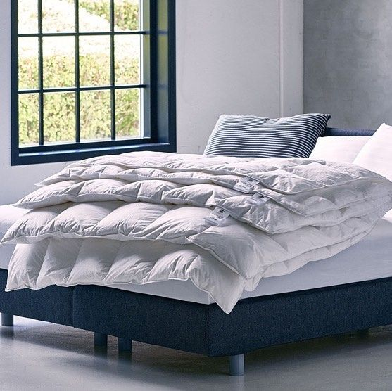 Elle Decor White Goose Feather Down Full Queen Comforter Reviews Bedding Collections Bed Bath Macy S Down Comforter Queen Comforter Comforters