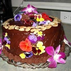 tastycookery   Black Chocolate Cake