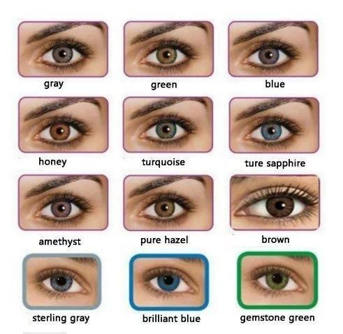 Freshlook Colorblends Color Contact Lens 12 Month Buy 3 Get 1 Free Stun Lens In 2020 Contact Lenses Colored Coloured Contact Lenses Eye Color Chart