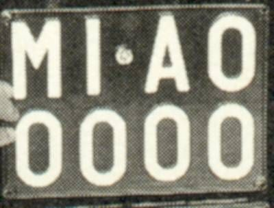 The cat's licence plate