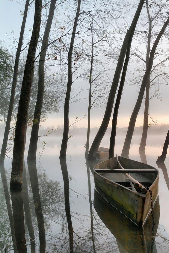 *Misty Morning - Setubal, Portugal (by Rui David)