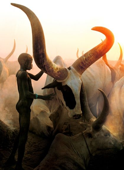 Dinka Boy     Photograph by Carol Beckwith and Angela Fisher