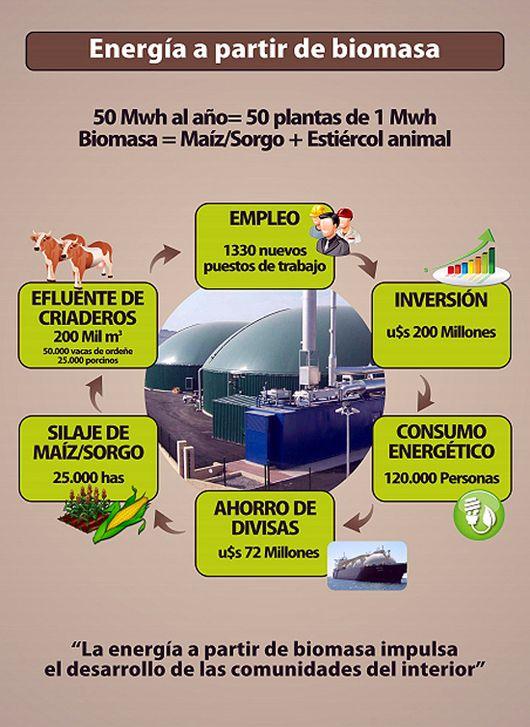 LOS PRINCIPIOS: BIOMASA AGROPECUARIA. UNA ALTERNATIVA PARA EL DESA...