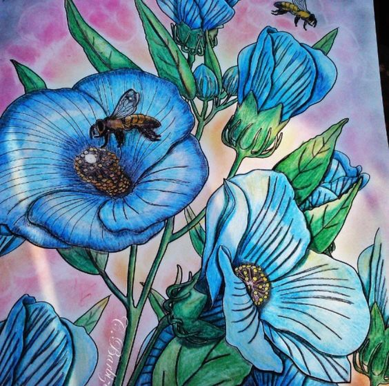 Inspirational Coloring Pages by @ninabarbizan #inspiração #coloringbooks #livrosdecolorir #jardimsecreto #secretgarden #florestaencantada #enchantedforest #reinoanimal #animalkingdom #adultcoloring #johannabasford #lostocean #oceanoperdido #milliemarotta