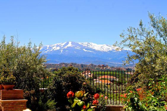 Frühling & Winter zusammen! Blick auf die tief verschneite Sierra Nevada