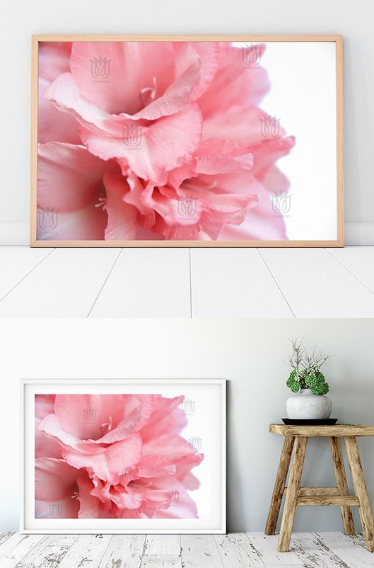 Gladiolus Printable Photo Pink Abstract Gladiolus Instant Etsy Coral Floral Nursery Pink Flower Photos Flower Photos