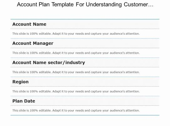 Account Plan Template Ppt Elegant Account Plan Template For
