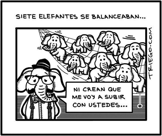 Elefante hipster