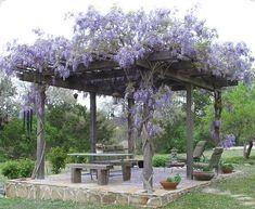 Beautiful #landscape idea for your #home
