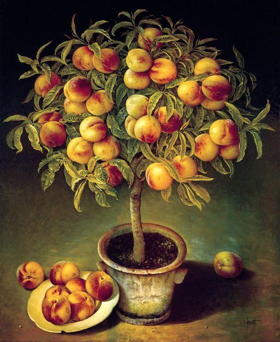 JOSE ESCOFET - Peach Tree in Clay Pot, oil on canvas 91 x 76 cm, 1991.: