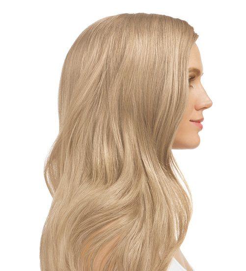 Model Image Light Blonde Cool Beige 9 13 Light Blonde Medium