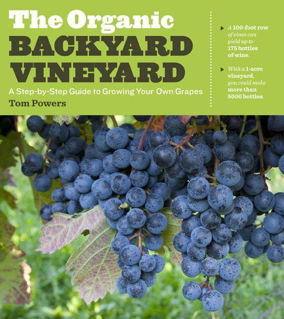 Vineyard, Backyards And Natural Homes On Pinterest