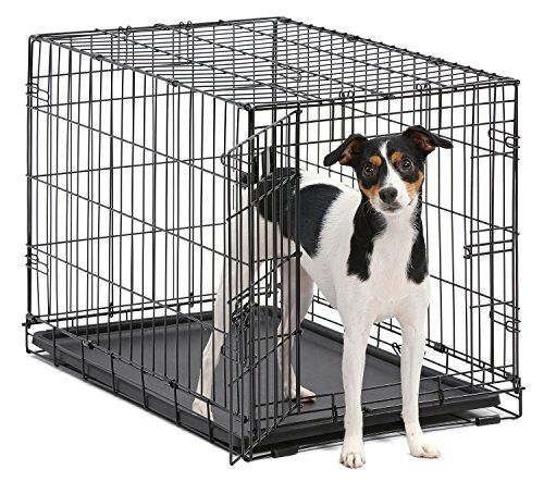Dog Crate Midwest Icrate 30 Folding Metal Dog Crate W Https Www Amazon Com Dp B000oxaerm Ref Cm Sw R Pi Dp U X Hiqpb Dog Crate Pet Kennels Medium Dogs