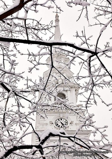 steeple and snow covered branches