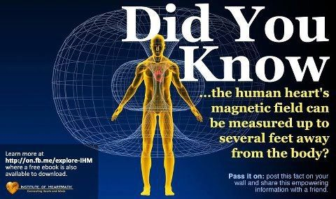 The most powerful organ in the human body