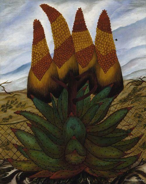 Josephine Joy: Aloes (1935-1938) via the Smithsonian American Art Museum