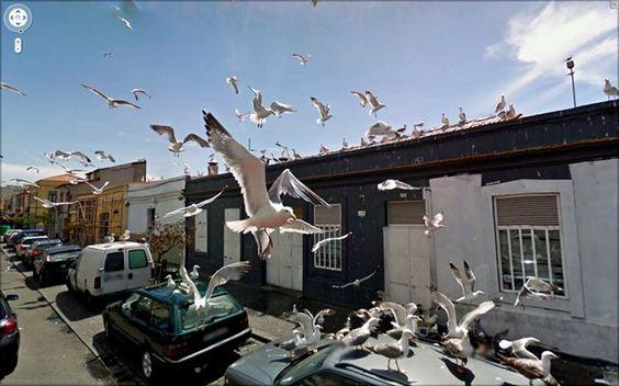 20 imagens assustadoras encontradas no Google Street View