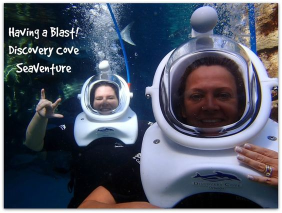 Discovery Cove Sea Venture Experience - Virtually Yours