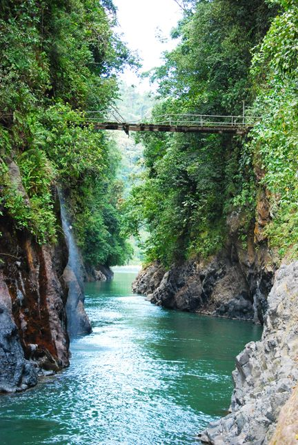 Barbilla National Park, Costa Rica. I would if we could kayak through here??