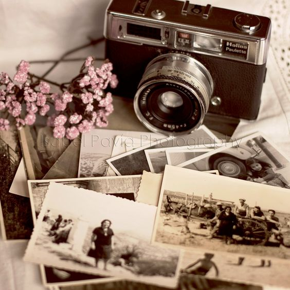 Vintage camera, photo and flowers wallpaper