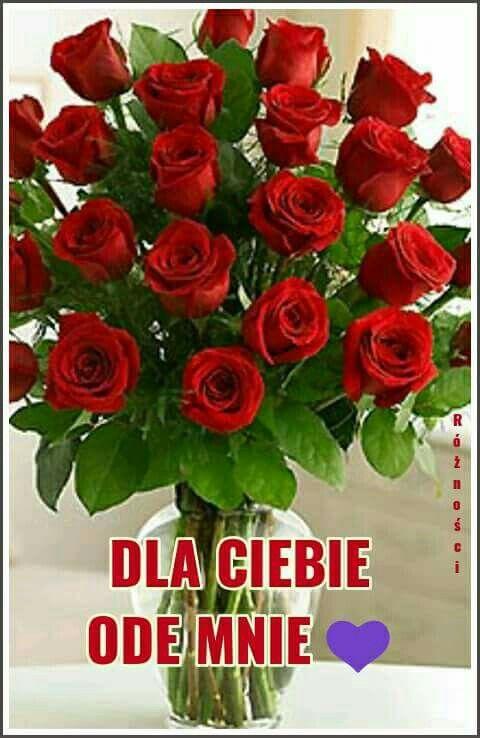 Chcialbym Ci Kwiaty Wkoncu Jakies Wreczyc Skarbus Happy Birthday Birthday Postcard