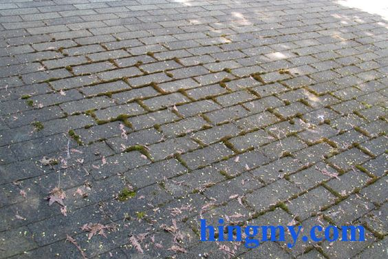 How To Remove Moss From A Roof Diy Tips From Hingmy Com
