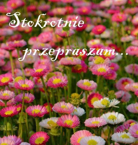 Kartka Pod Tytulem Stokrotnie Przepraszam Good Morning Flowers Flower Aesthetic How To Memorize Things