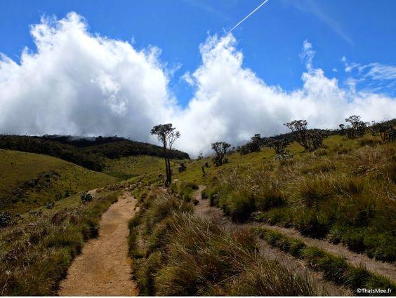 Horton Plains Sri Lanka, brume au loin