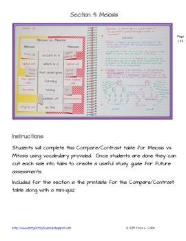Compare contrast school vs work?