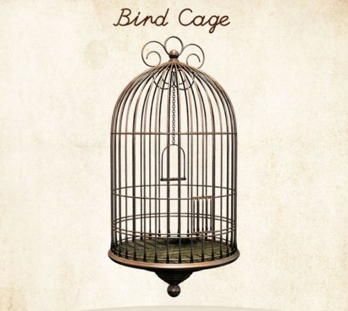 Antique bird cage drawing - photo#49