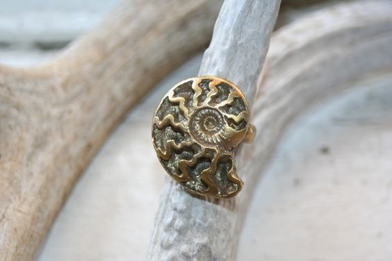 Custard Boutique — Alkemie Ammonite Ring
