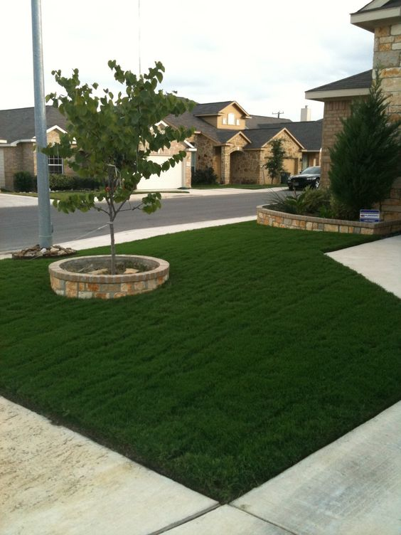 Here is my lawn results, using the tips and tricks in my new ebook @ www.lawnofthemonth.com