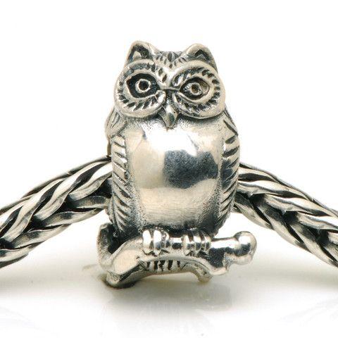 Redbalifrog Night Owl