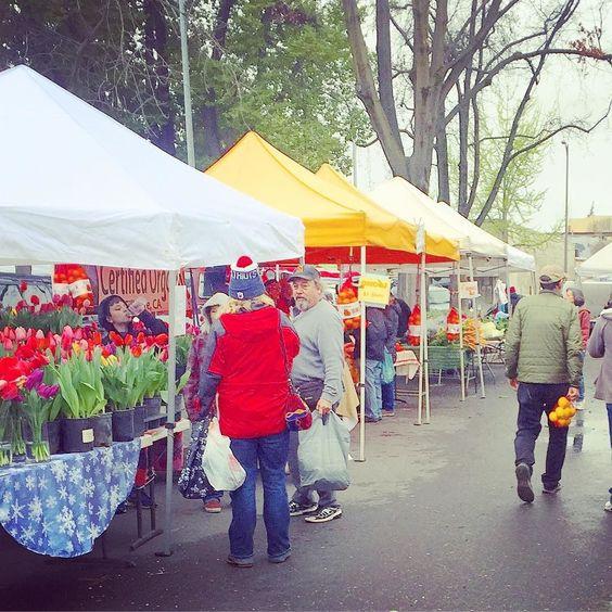 Chico farmers market on this beautiful Saturday morning #valleyoaktoolco #instagardener #giy #organicfood #organicgardening #sustainability #toolstosavetheworld Re-post by Hold With Hope