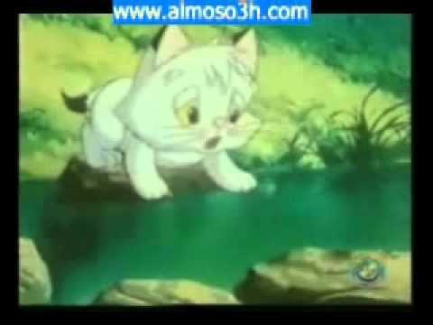كرتون القط الضائع  qtatu sa'eed!