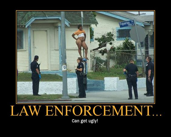Law Enforcement can get ugly!