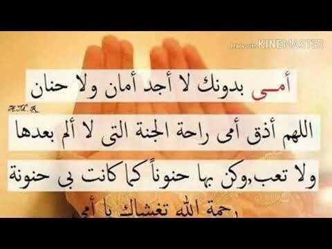 Youtube Favorite Book Quotes Quran Quotes Love Book Quotes