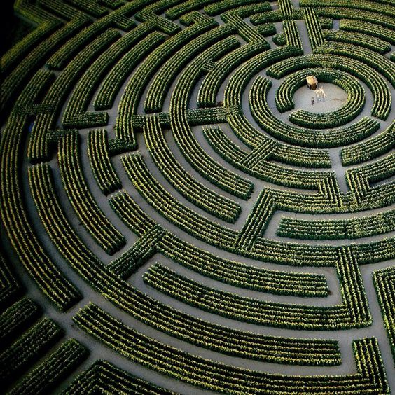 Préférence 15 of the Most Amazing Mazes and Labyrinths | Large plants, Maze  VC66