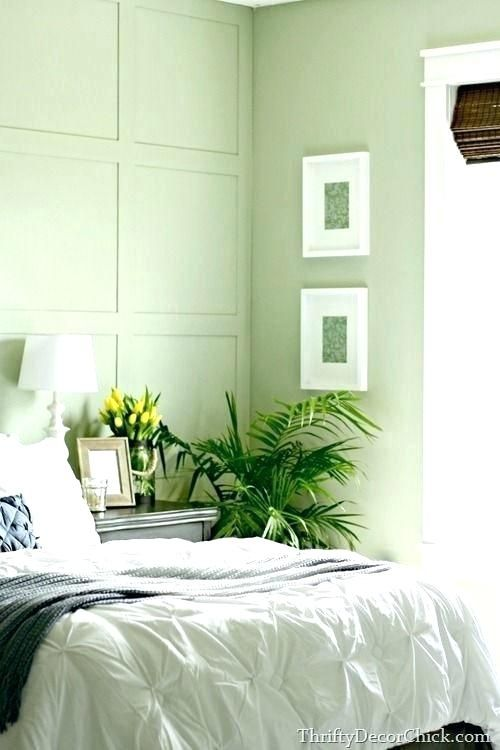 Colour Palette For Light Green Walls Google Search Green