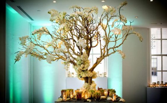 Manzanita Centerpiece Tree - Google Search