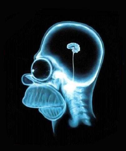 Usando os 10% do cérebro.
