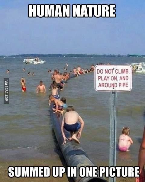 Well it says do not climb then it says play on