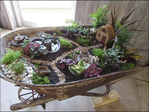 Fairy Garden in an old wheelbarrow:
